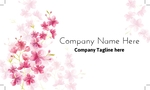 Flowers - Cherry